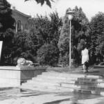 Каштановый сквер 70е