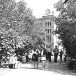 Каштановый сквер, на заднем плане сталинка-молочный двор