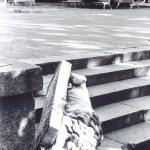 Каштановый сквер, опрокинутый лев. 90е