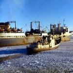 На промысле в Антарктике