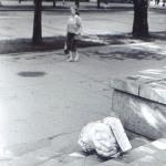 Опрокинутый лев в Каштановом сквере. 90 е