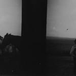 Стереопара. Фото 19. Архив С.Дорошенко