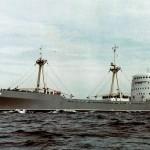 Виктор Васнецов 1964 г