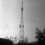 1967 год.