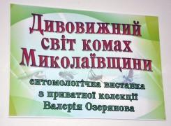 Выставка насекомых от Валерия Озерянова
